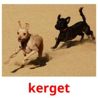 kerget picture flashcards