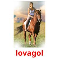 lovagol picture flashcards