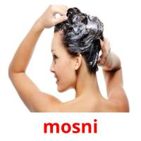 mosni picture flashcards