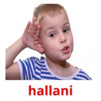 hallani picture flashcards