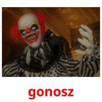 gonosz picture flashcards