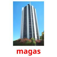 magas picture flashcards