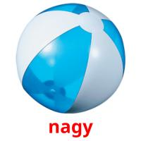 nagy picture flashcards