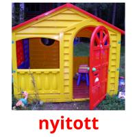 nyitott picture flashcards