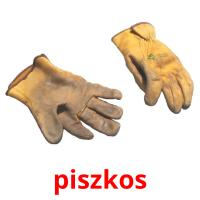 piszkos picture flashcards
