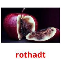 rothadt picture flashcards