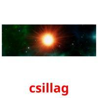 csillag picture flashcards