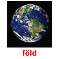 föld picture flashcards