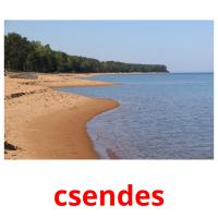 csendes picture flashcards