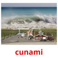 cunami picture flashcards