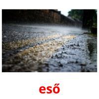 eső picture flashcards