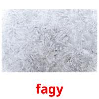 fagy picture flashcards
