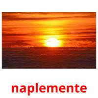 naplemente picture flashcards