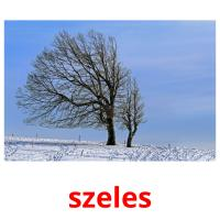 szeles picture flashcards