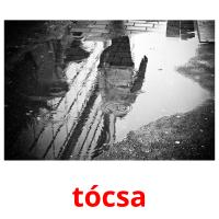 tócsa picture flashcards
