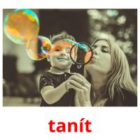 tanít picture flashcards