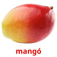 mangó picture flashcards
