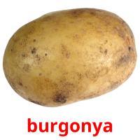burgonya карточки энциклопедических знаний