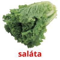 saláta карточки энциклопедических знаний