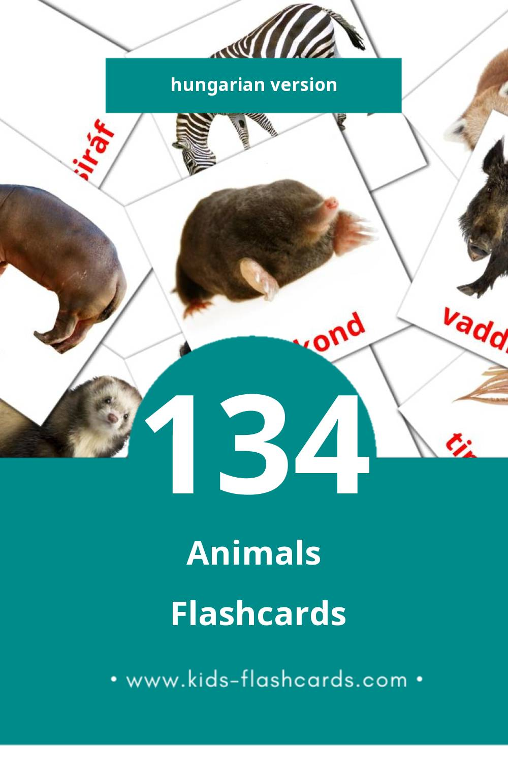 Visual Állatok Flashcards for Toddlers (134 cards in Hungarian)
