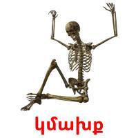 կմախք picture flashcards