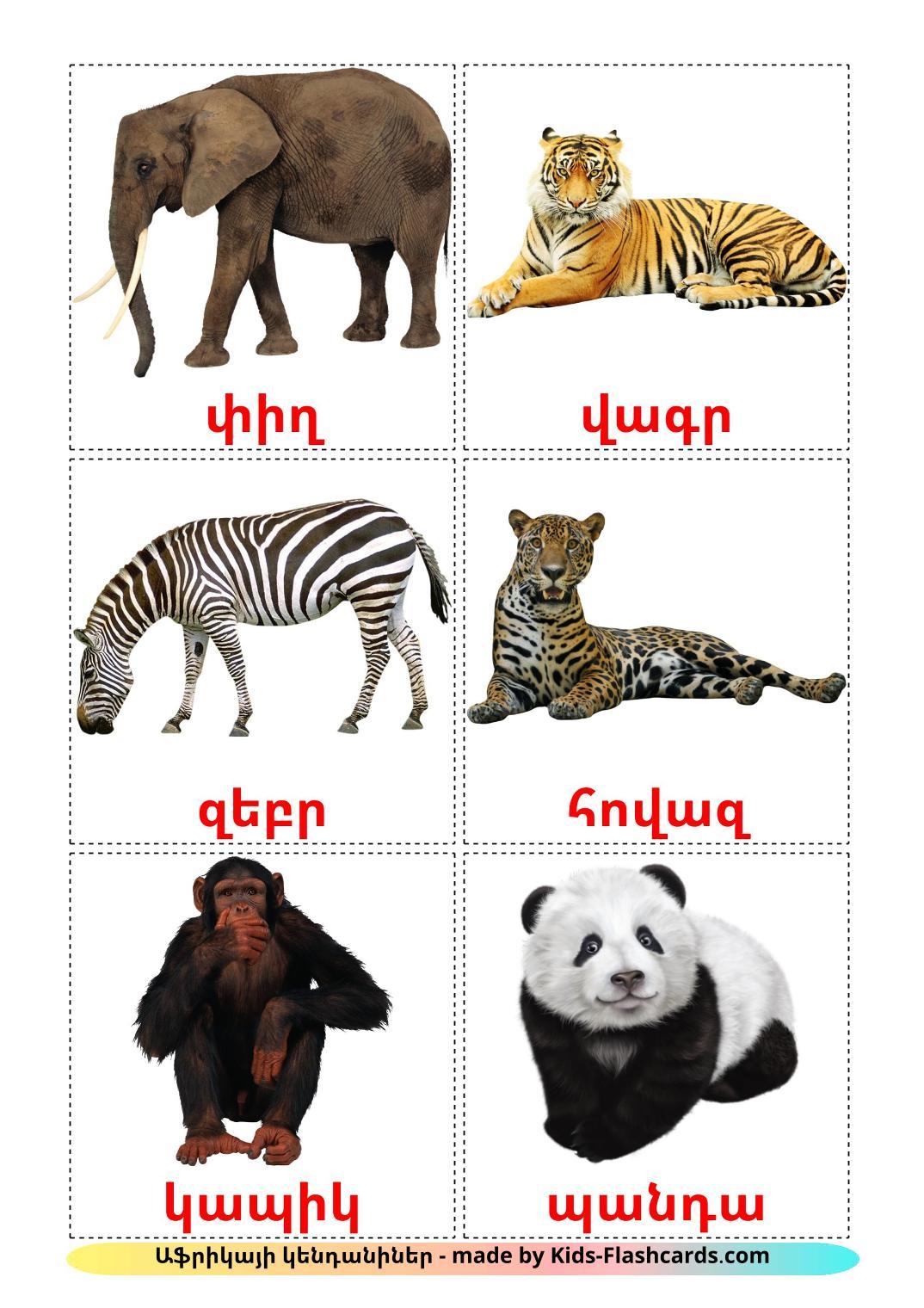Jungle animals - 21 Free Printable armenian Flashcards