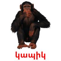 կապիկ picture flashcards