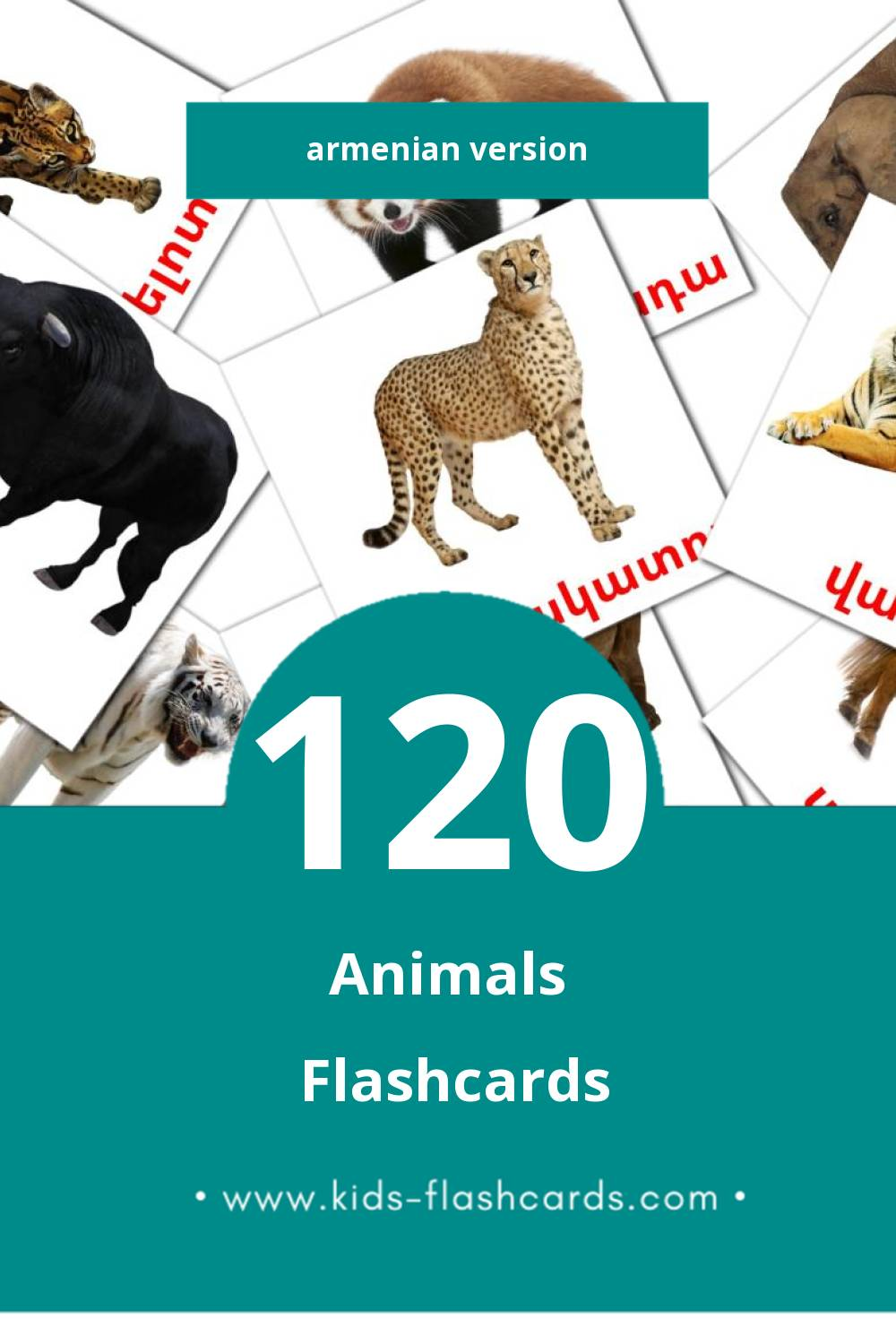 Visual Animales Flashcards for Toddlers (46 cards in Armenian)