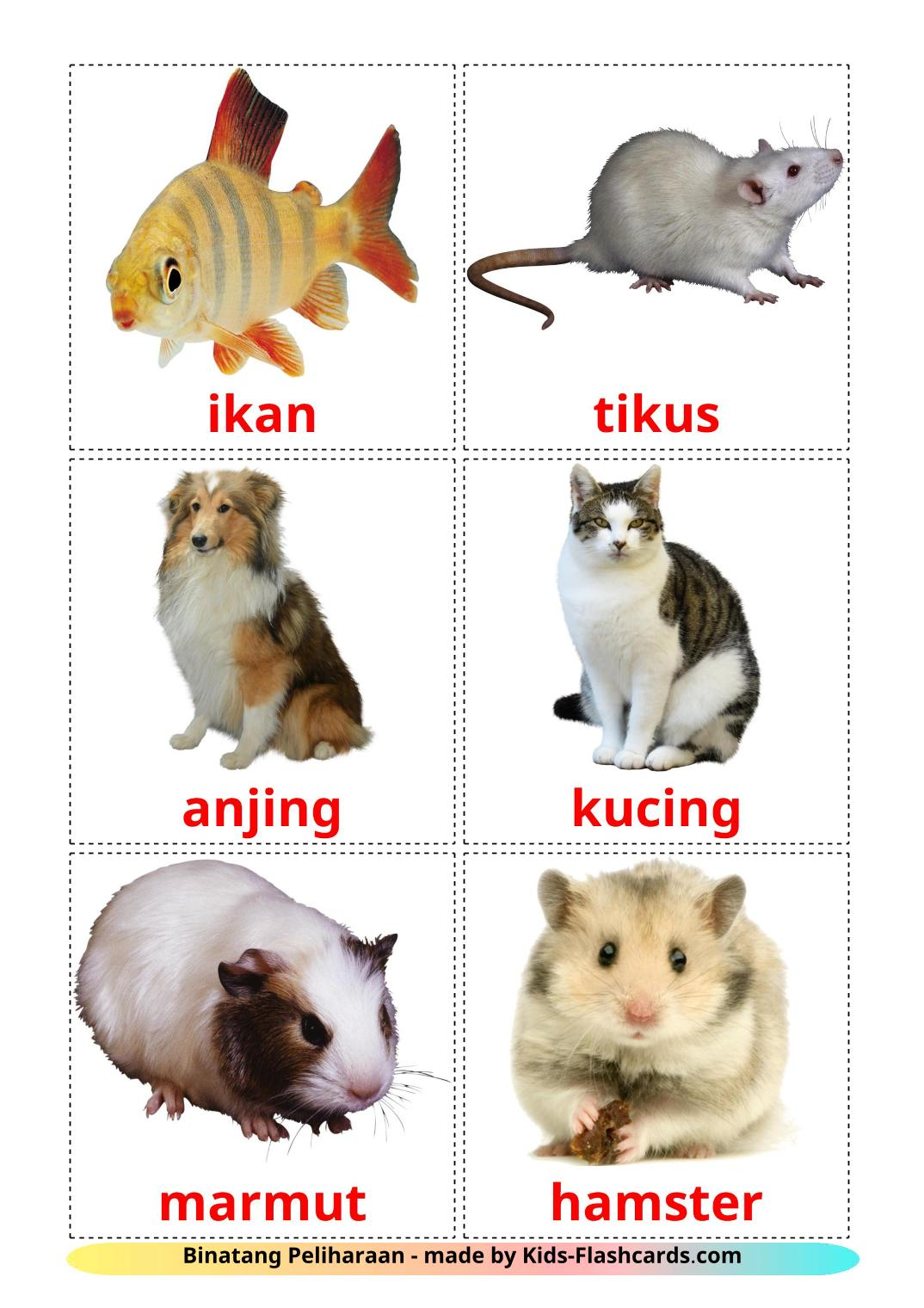 Domestic animals - 10 Free Printable indonesian Flashcards