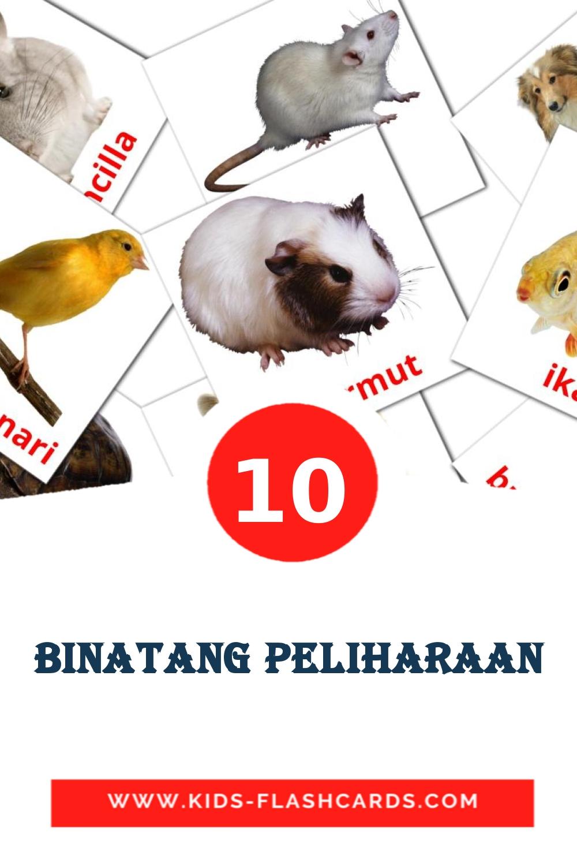 10 Binatang Peliharaan Picture Cards for Kindergarden in indonesian