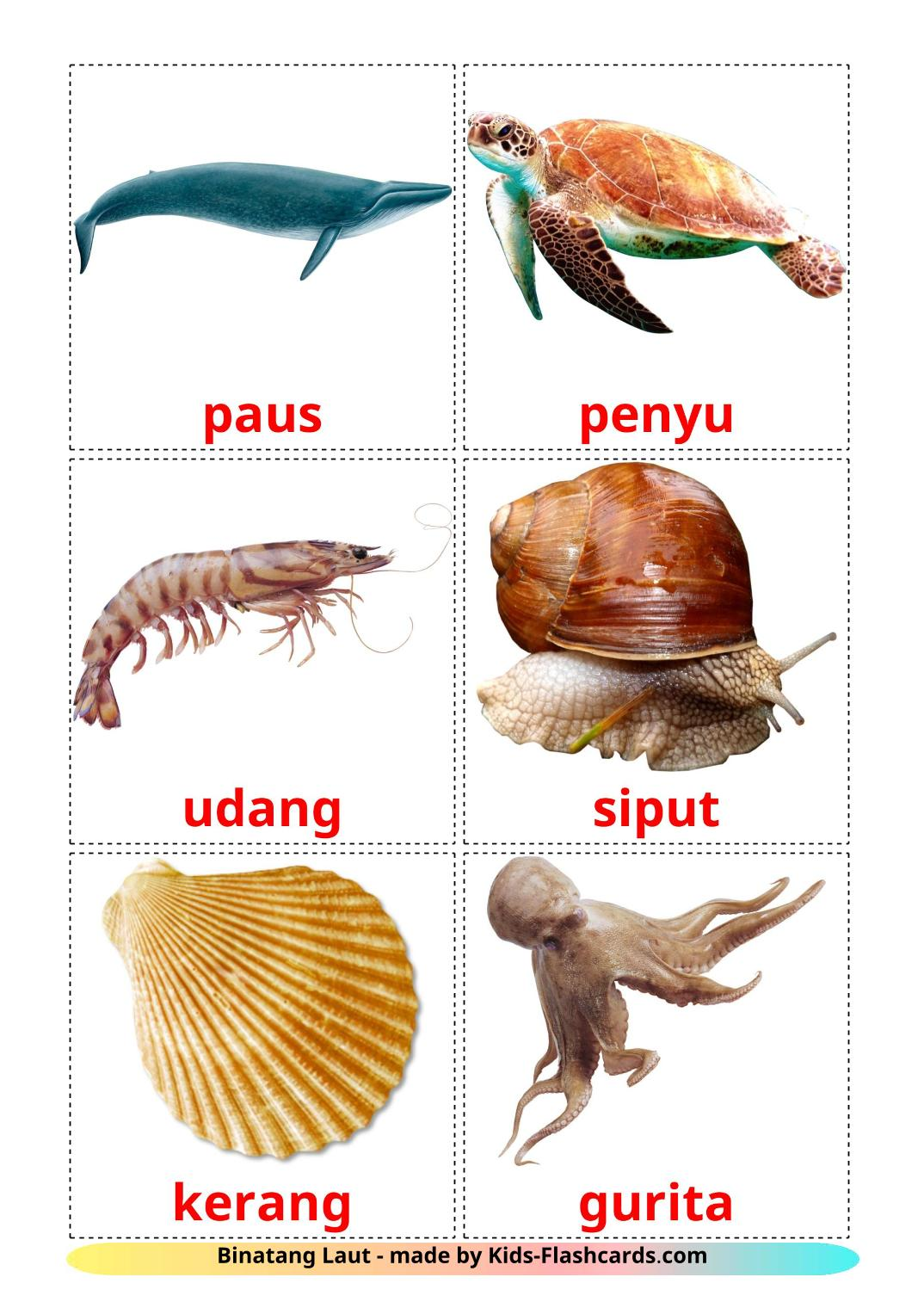 Sea animals - 29 Free Printable indonesian Flashcards