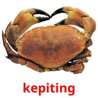 kepiting picture flashcards