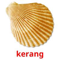 kerang picture flashcards