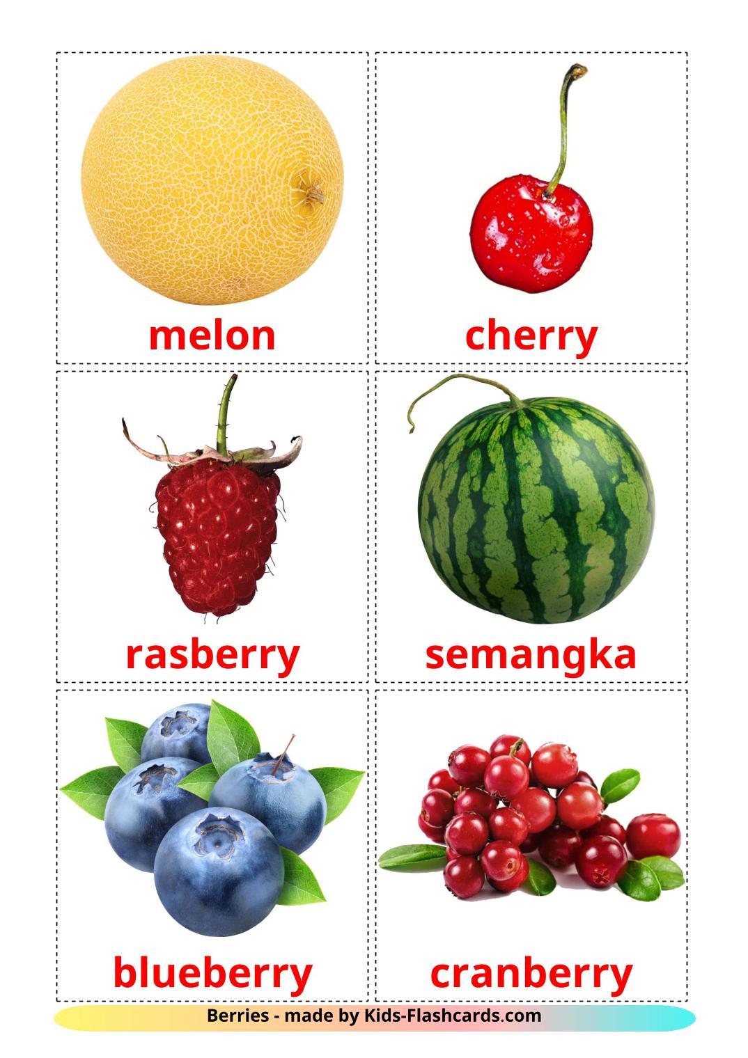 Berries - 11 Free Printable indonesian Flashcards