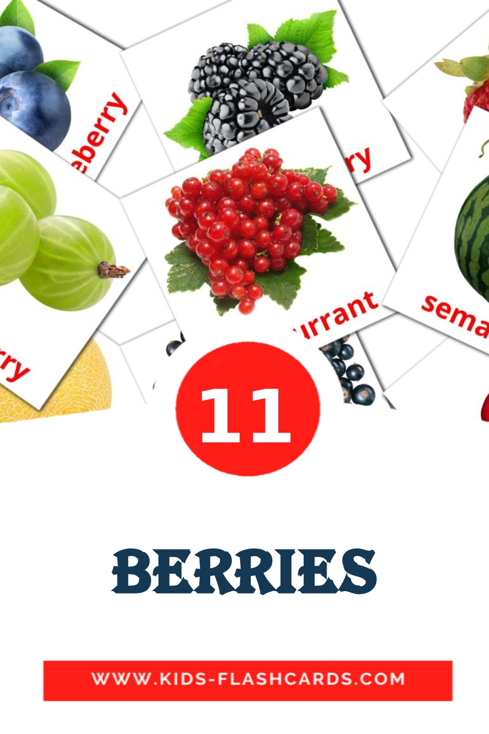 11 Berries Picture Cards for Kindergarden in indonesian