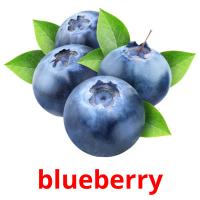 blueberry picture flashcards