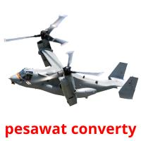 pesawat converty picture flashcards