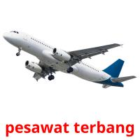 pesawat terbang picture flashcards