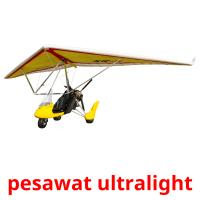 pesawat ultralight picture flashcards