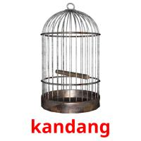 kandang picture flashcards