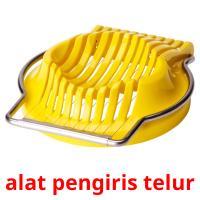 alat pengiris telur picture flashcards