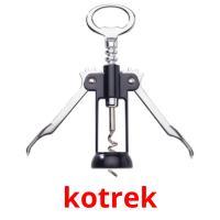 kotrek picture flashcards