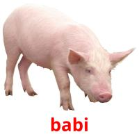 babi picture flashcards