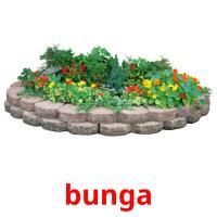 bunga picture flashcards