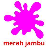 merah jambu picture flashcards