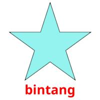bintang picture flashcards