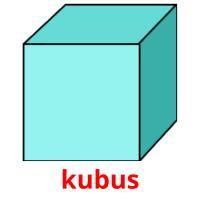 kubus picture flashcards