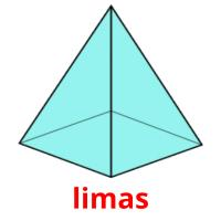 limas picture flashcards