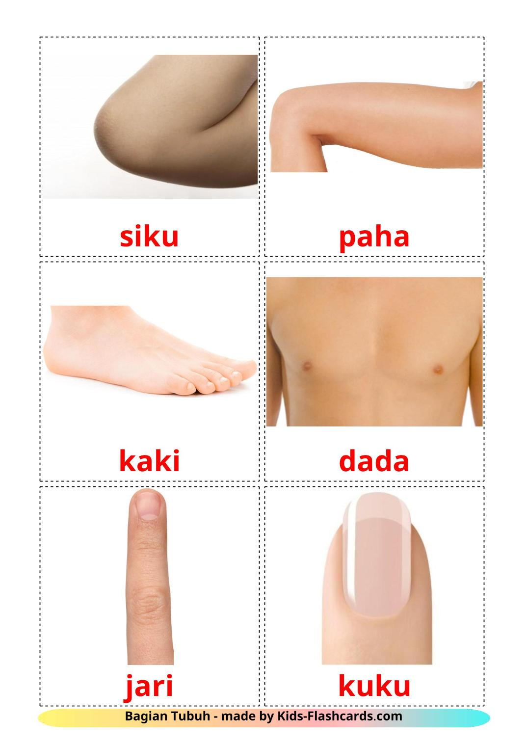 Body Parts - 26 Free Printable indonesian Flashcards