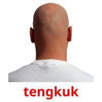 tengkuk picture flashcards